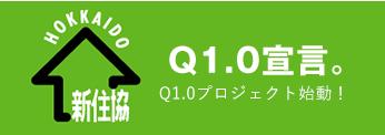 Q1.0宣言